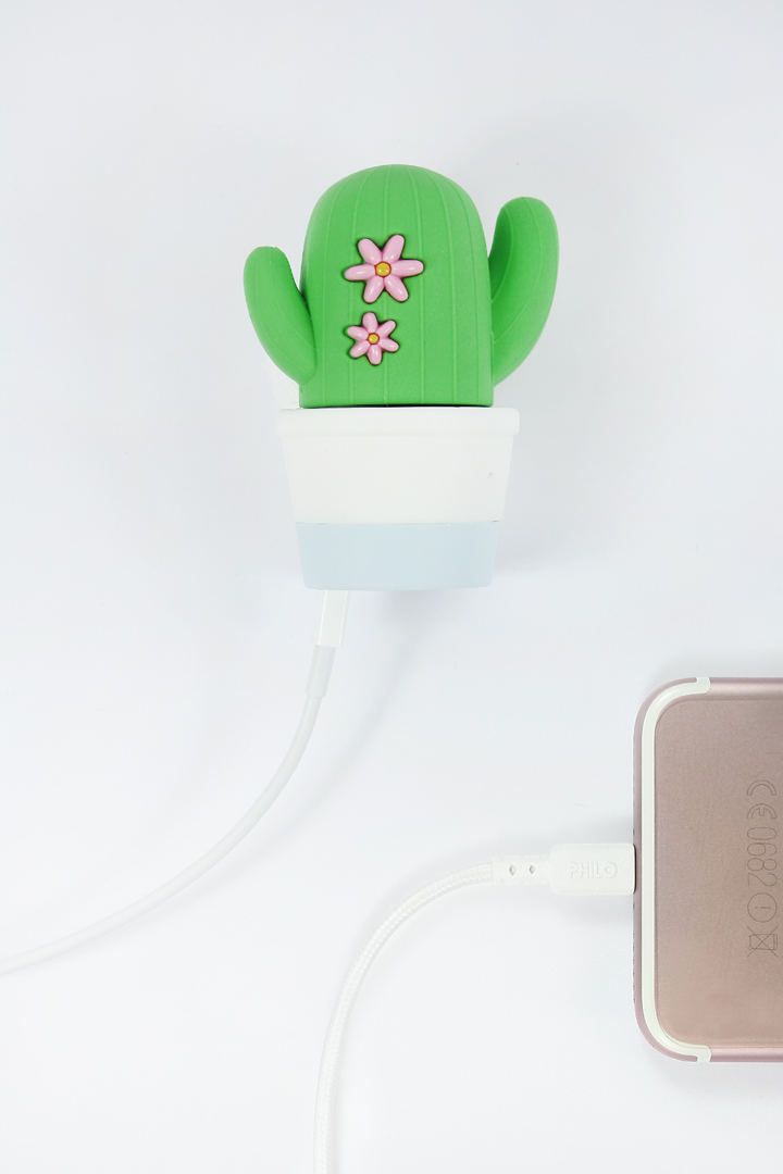 cactus-power-bank